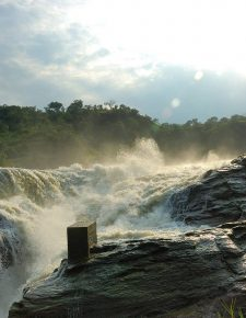 11 Days Uganda Safari, Unveiling the 'Pearl' - Murchison Falls National Park
